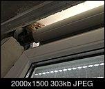 Klicke auf die Grafik für eine größere Ansicht  Name:IMG_2936.jpg Hits:10 Größe:303,4 KB ID:24157
