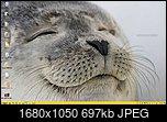 Klicke auf die Grafik für eine größere Ansicht  Name:screen.jpg Hits:60 Größe:697,2 KB ID:21858